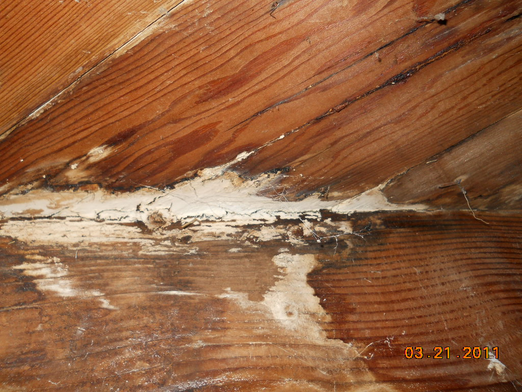 floor damage home inspection san diego